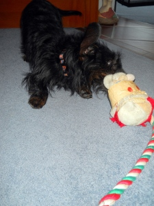 Chloe Throttles Rattling Santa